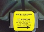 Buckle Guard